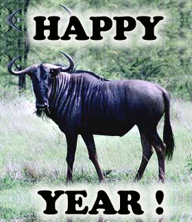 http://gregvan.files.wordpress.com/2011/01/happy-gnu-year.jpg